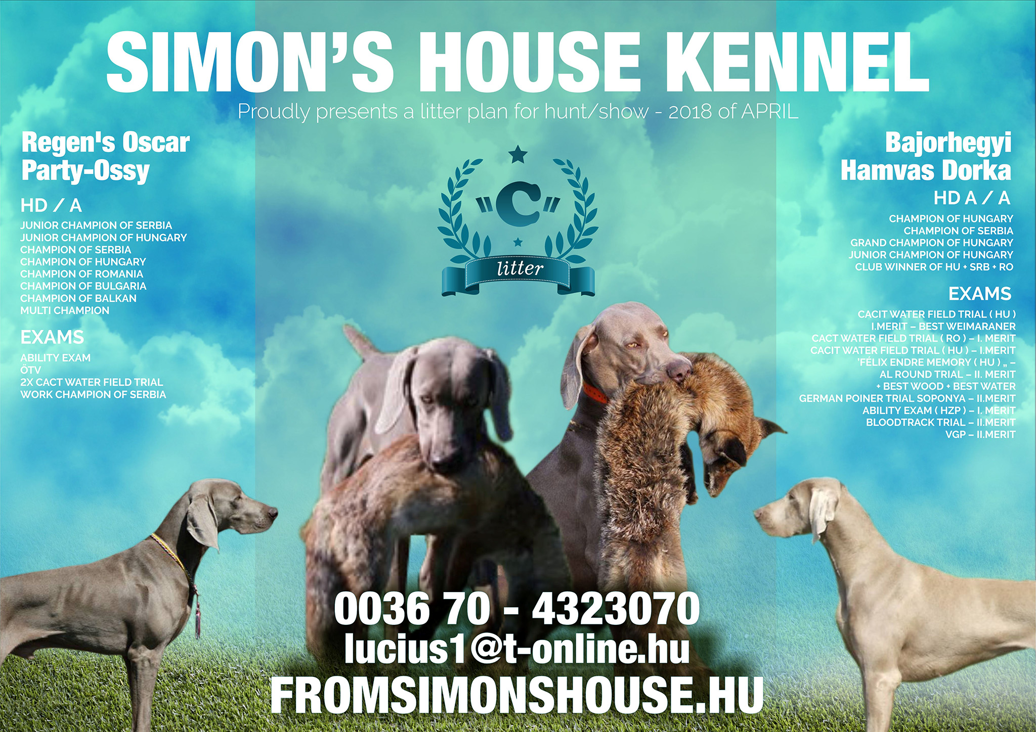 Simon's house kennel: Proudly presents a litter plan for hunt/show - 2018 of APRIL